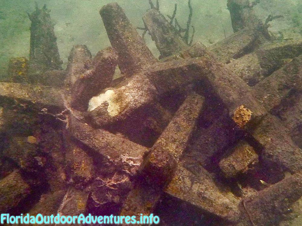 FloridaAutdoorAdventures.info-02.jpg