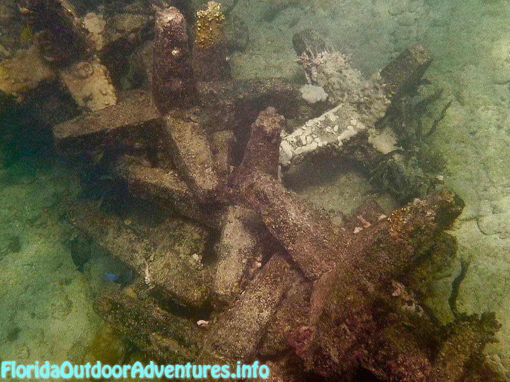 FloridaAutdoorAdventures.info-05.jpg
