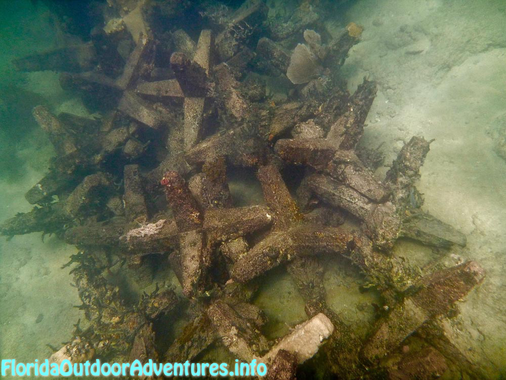FloridaAutdoorAdventures.info-09.jpg