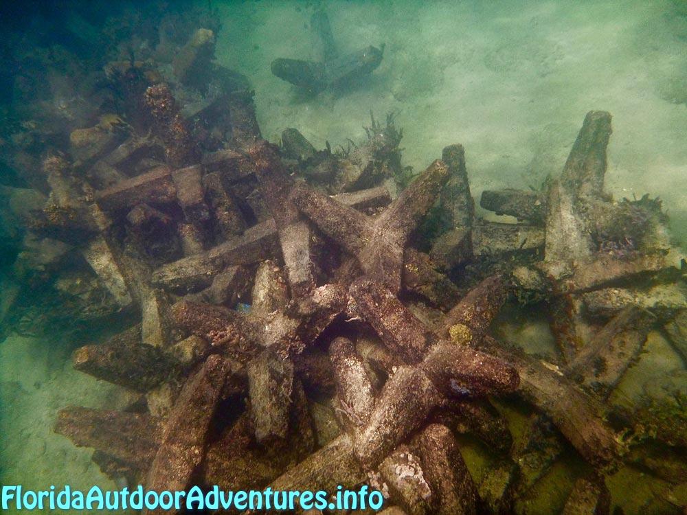 FloridaAutdoorAdventures.info-10.jpg
