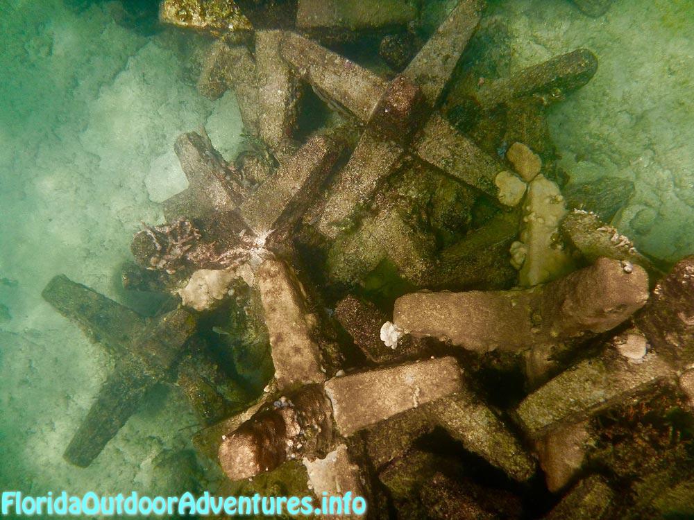 FloridaAutdoorAdventures.info-13.jpg