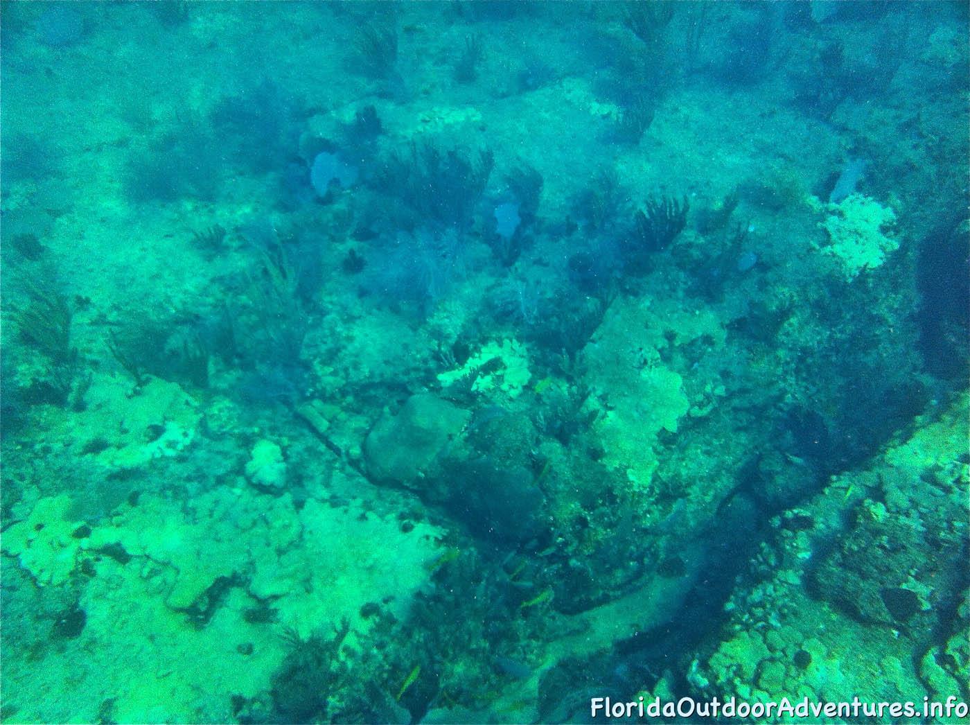 floridaoutdooradventures.info-05.jpg